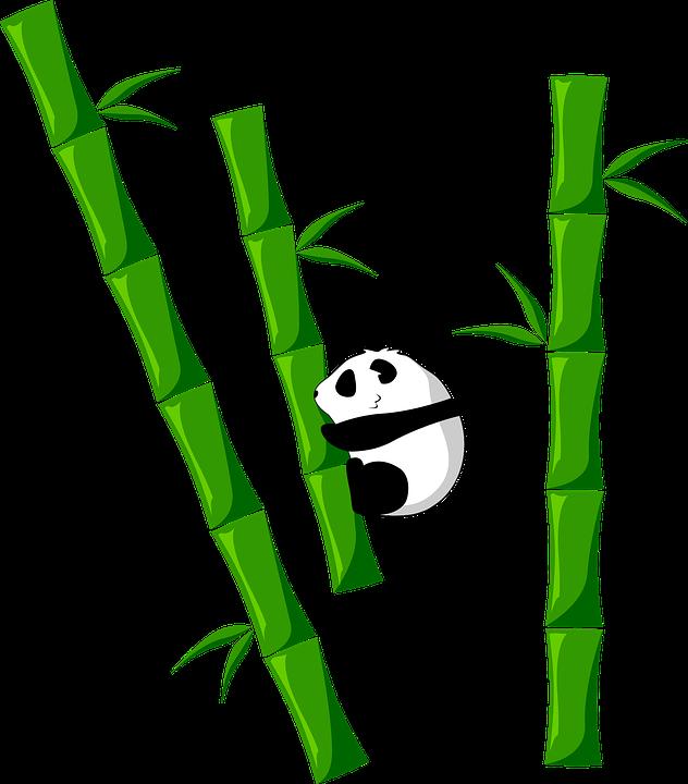 Unduh 66+ Gambar Panda Bambu Terbaik Gratis