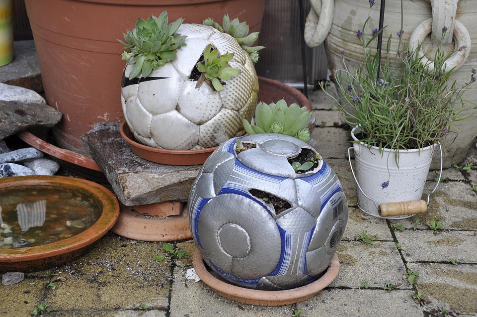 Diy, Football, Plant, Upcycling