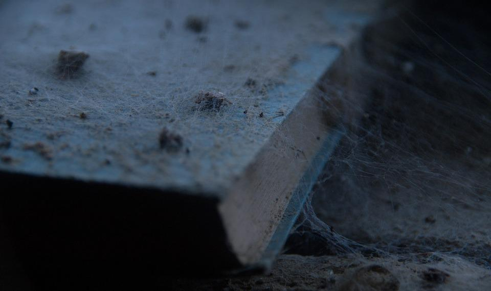 A light blue book is shown on a floor, covered in dust and cobwebs