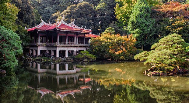 Tokyo, Park, Nature, Japan, Asia