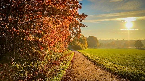 Sunset, Autumn, Landscape, Sunlight