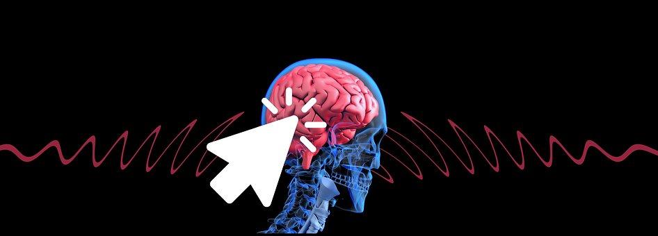 Schmetterlingseffekt, Pensez, Cerveau