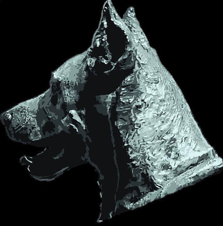dog-2809952_960_720.png