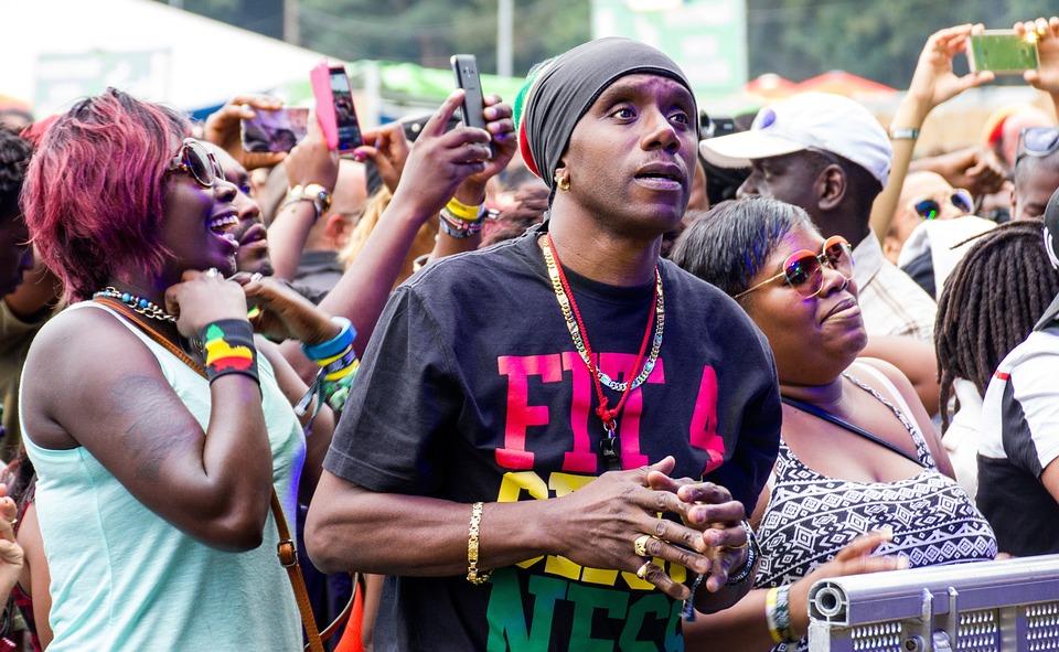 Reggae, Audience, Concert, Rasta, Performance, People
