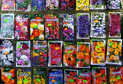 Seed, Sämerei, Samentütem, Bags, Seeds