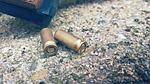 cartridge, sleeves, weapon