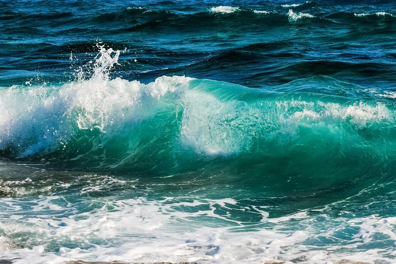 лужайка картинка волнующегося моря насчитывается