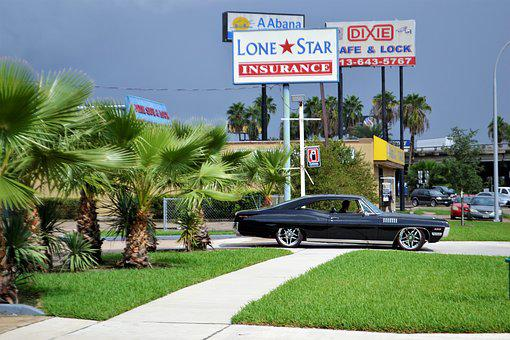 Classic Car And Palm Trees, Ford