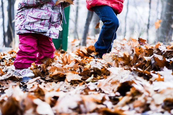 Картинки осень дети собирают листья