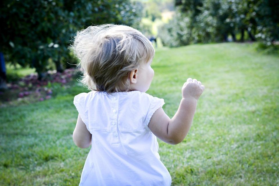 自然, 儿童, 跑步, 小孩子, 长廊, 孩子, 活动, 公园, 树木, 儿童游戏, 请享用, 小小孩, 外面