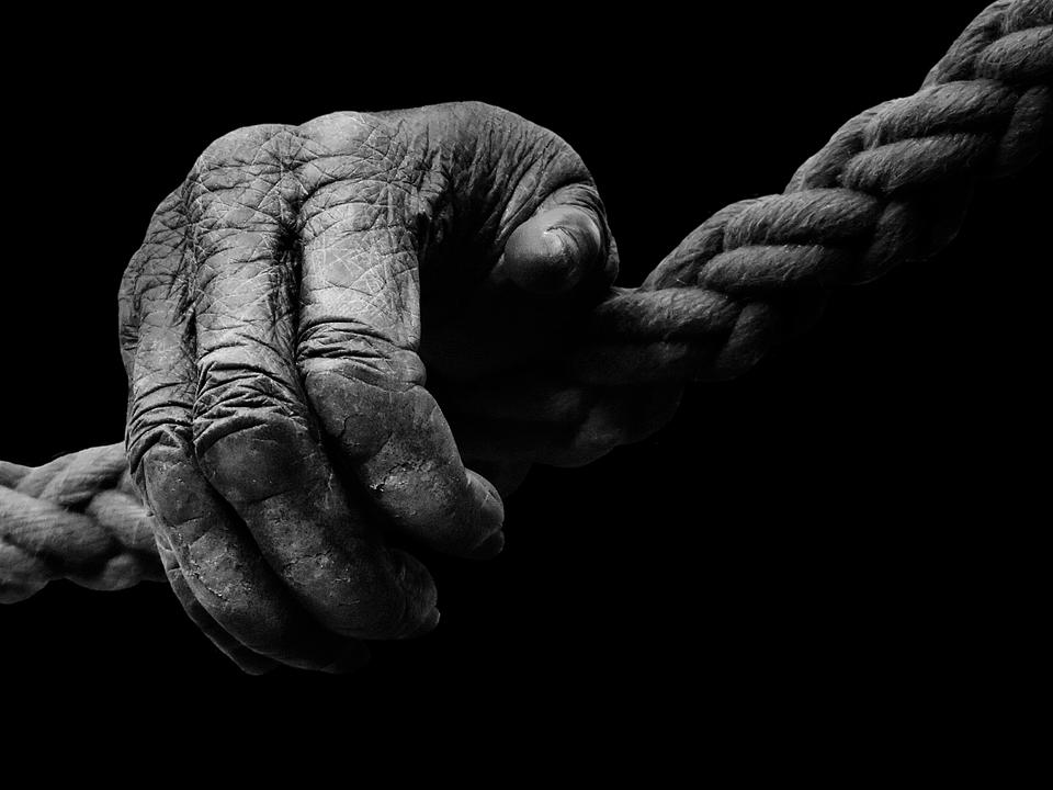 Exceptionnel Photo gratuite: Main, Singe, Gorille, Noir Et Blanc - Image  RX06