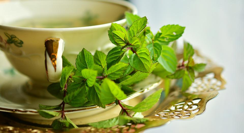 Peppermint, Peppermint Tea, Mint, Tee, Leaves