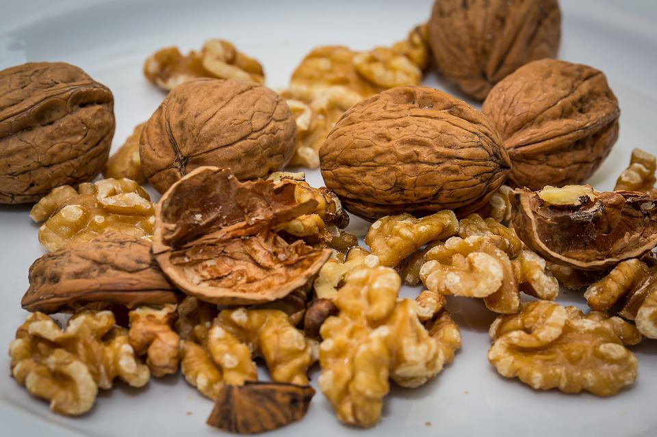 Walnuts Images Pixabay Download Free Pictures