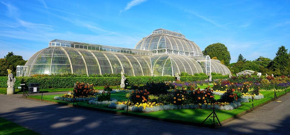Palm, Glass, House, Botanical, Gardens, Kew, London