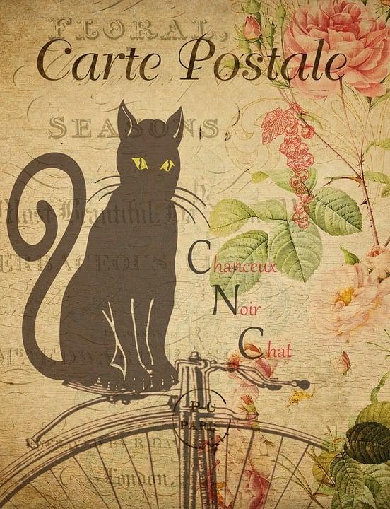 Bien-aimé Illustration gratuite: Carte Postale, Vintage, Carte - Image  II81