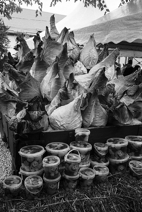 Cabbage, Pointed, Festival, Food, Fresh, Healthy