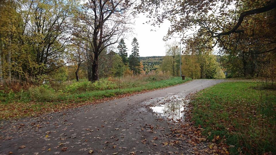 Grusväg Efter Regn Vattenpöl - Gratis foto på Pixabay