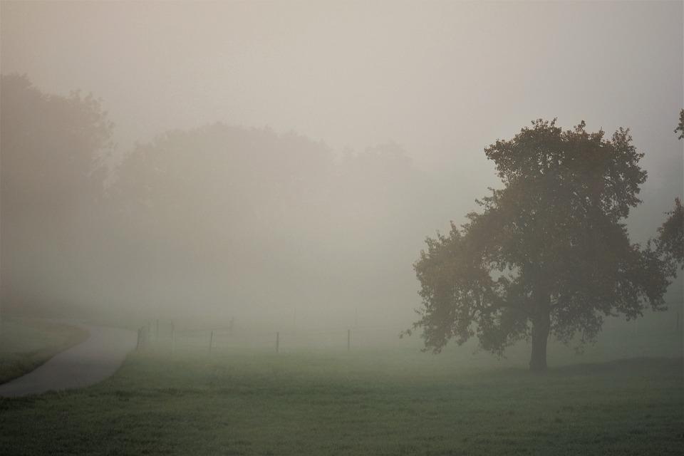 Risultati immagini per nebbia autunno