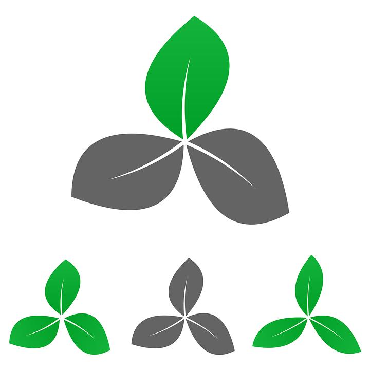 Garden Logo, Garden, Logo, Icon, Whole, Leaf