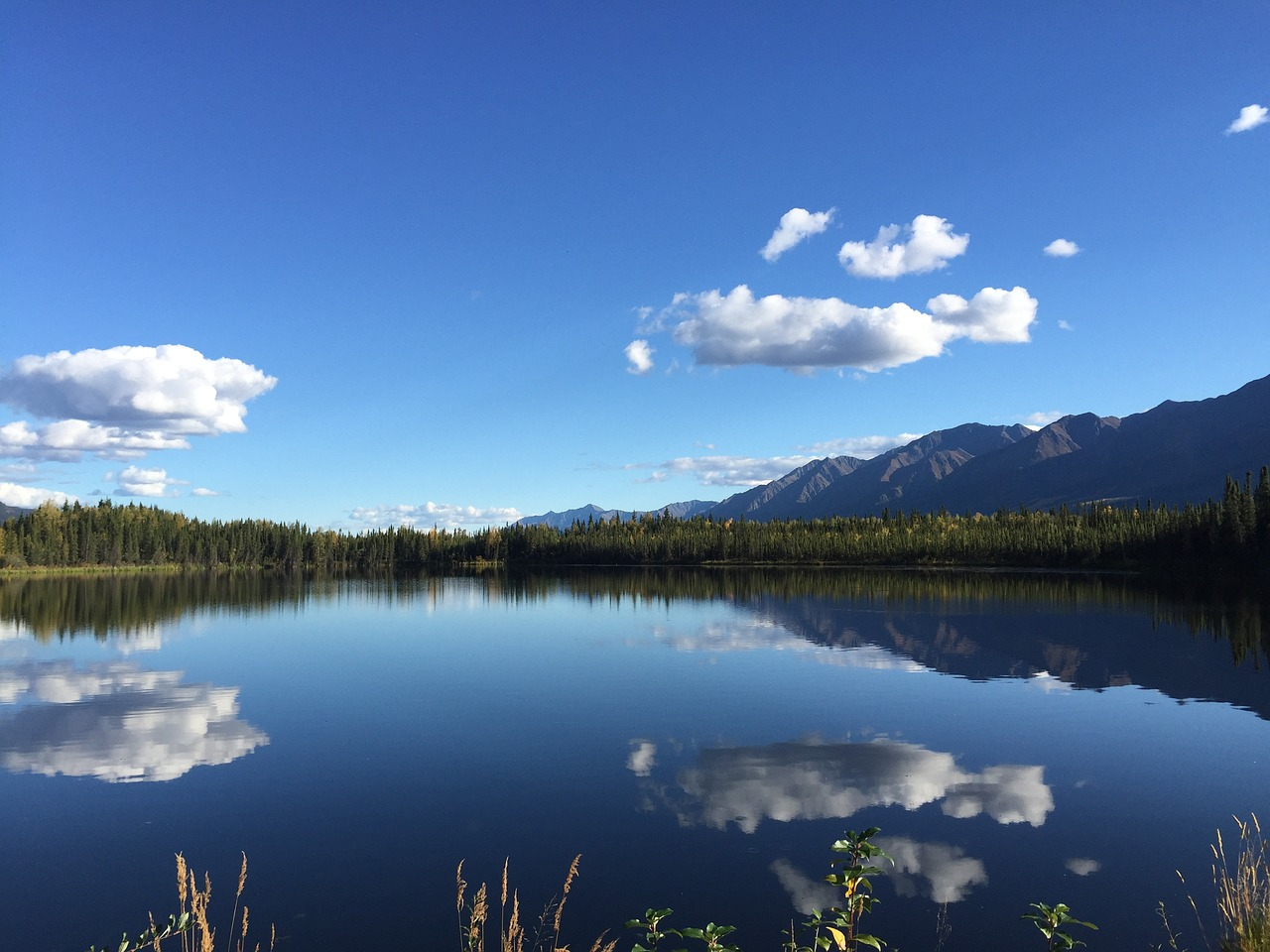 Yukon Territory Nature Lake Free Photo On Pixabay