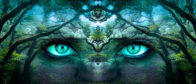 Fantasy Eyes Forest 183 Free Photo On Pixabay