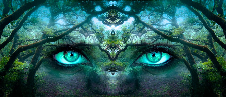 Fantasy, Eyes, Forest, Aesthetic, Face, Portrait