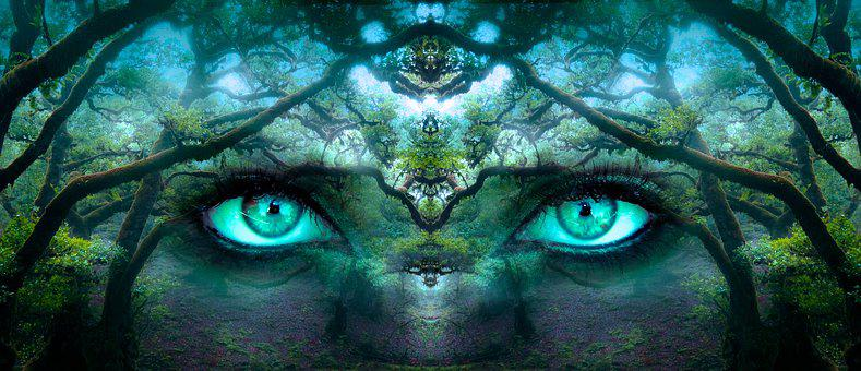 Fantasy, Eyes, Forest, Aesthetic, Face