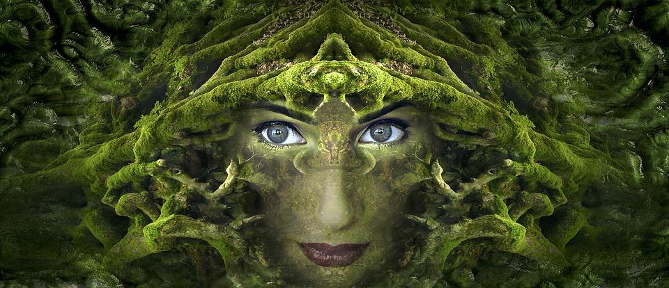 Fantasia, Ritratto, Root, Muschio, Forest, Simmetrico