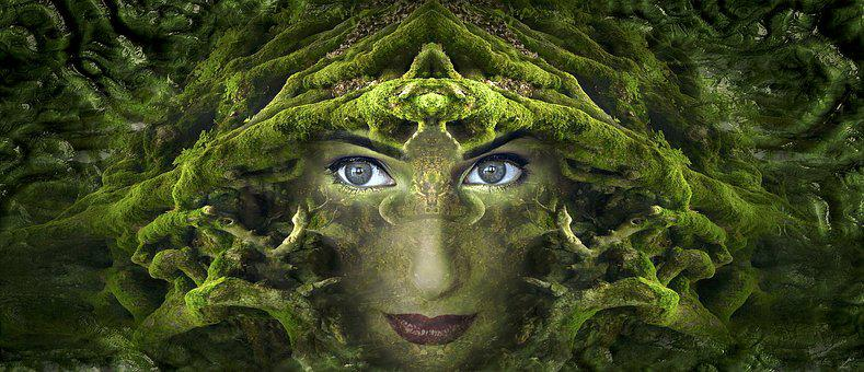 Fantasy, Portrait, Root, Moss, Forest