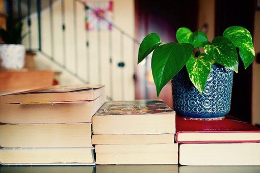 ブック, レジャー, 読み, 文化, 植物, 教授, スタジオ, 議題