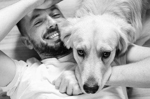 Dog, Man, Animal, Friendship