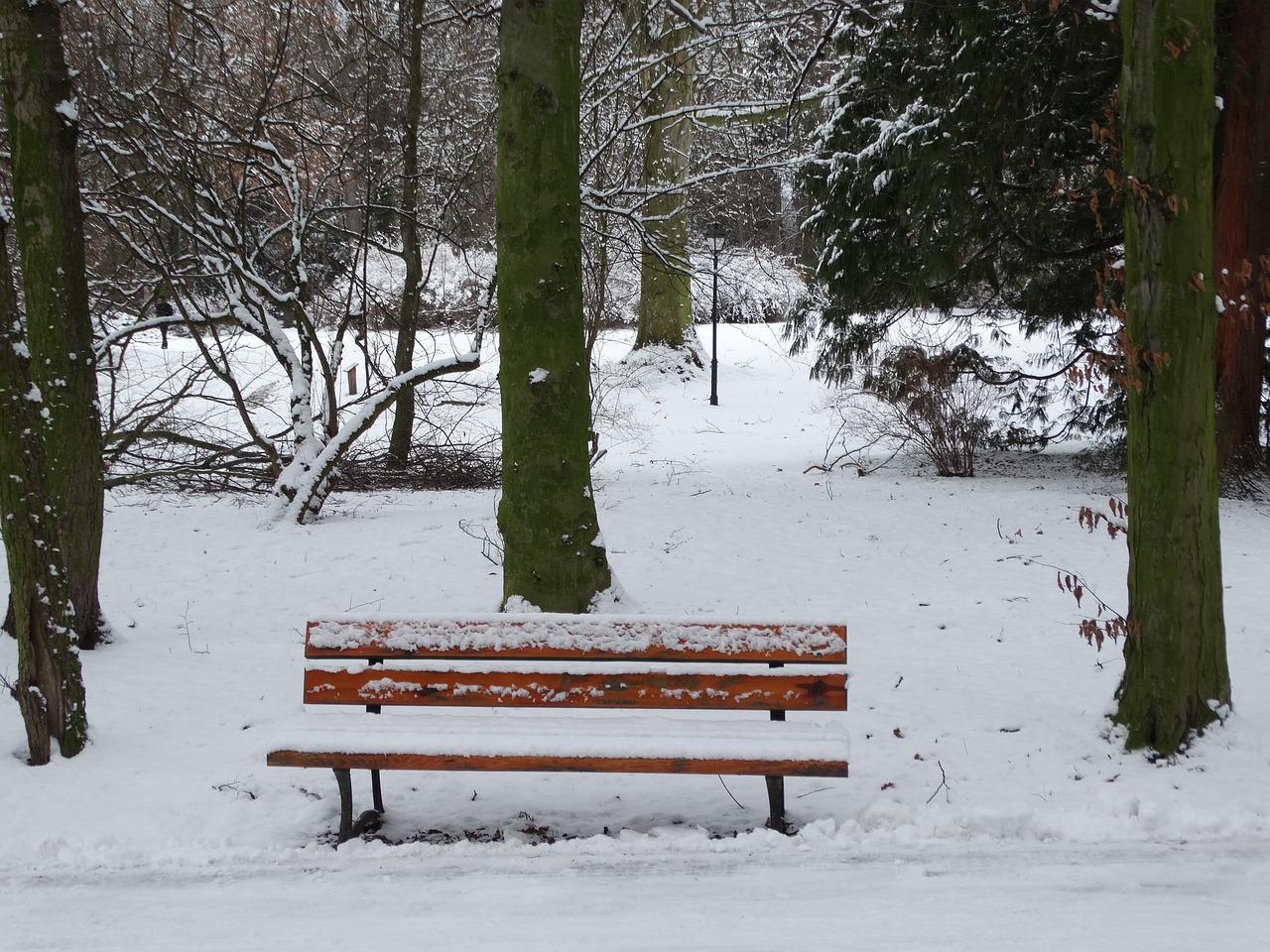 этот скамейка под снегом картинки помощью