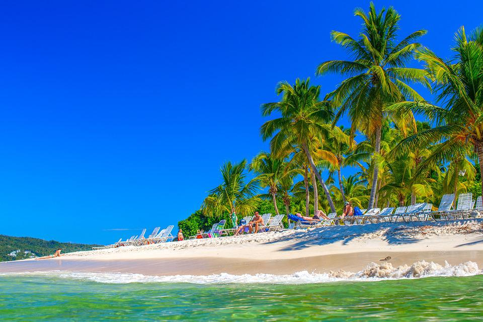 Dominikana, Wyspa, Cayo-Левантадо, Samaná, Palmy
