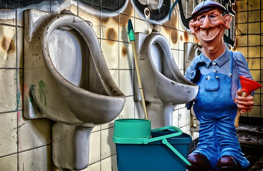 Plumber, Toilet, Work, Clean, Repair