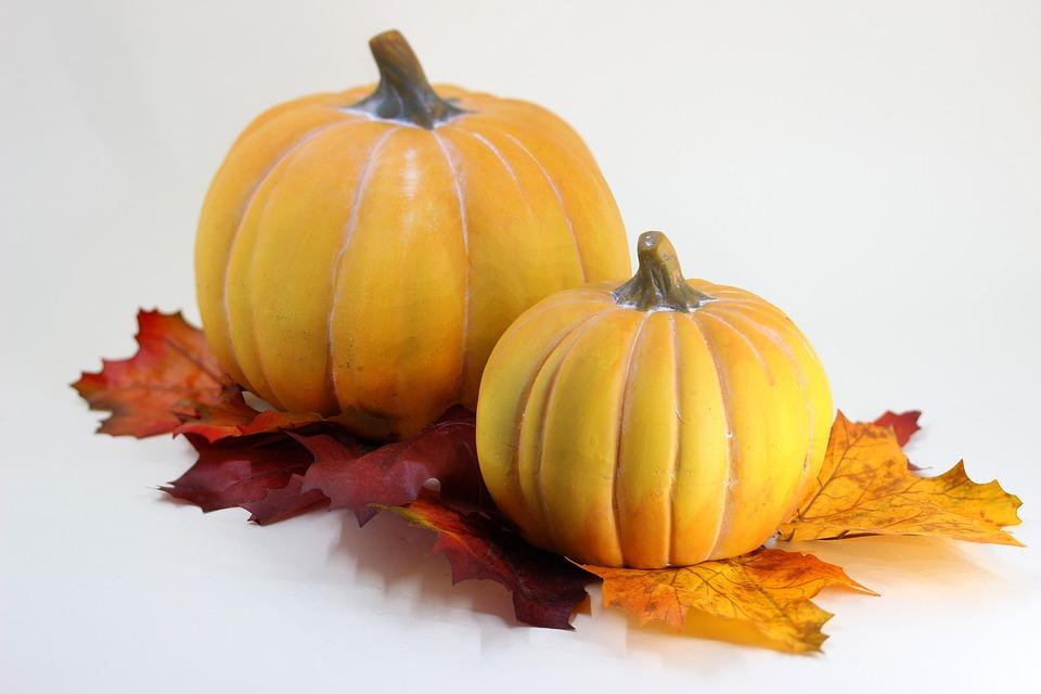 Pumpkin Leaves Halloween Autumn