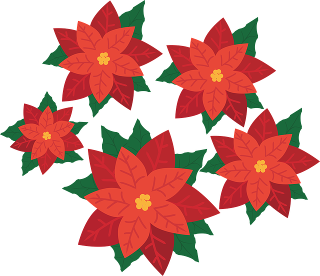 Poinsettia Flower Plant 183 Free Vector Graphic On Pixabay