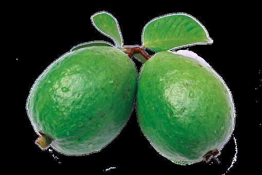 Jambu, Guava, Leaf, Green, Guava Png