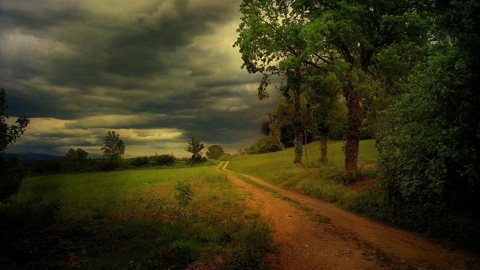 Kerala rain mansoon free photo on pixabay - Nature ke wallpaper ...