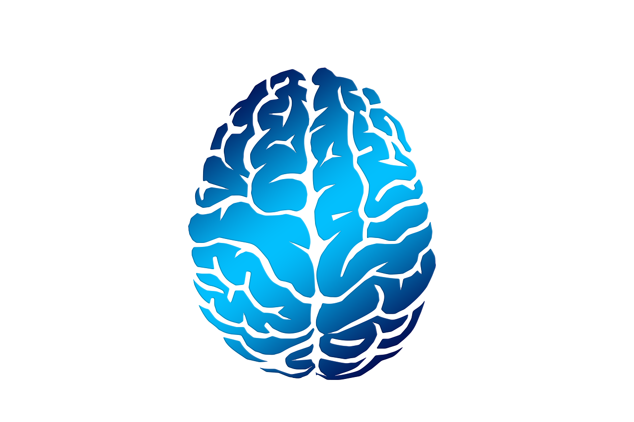 Brain Biology Abstract - Free image on Pixabay