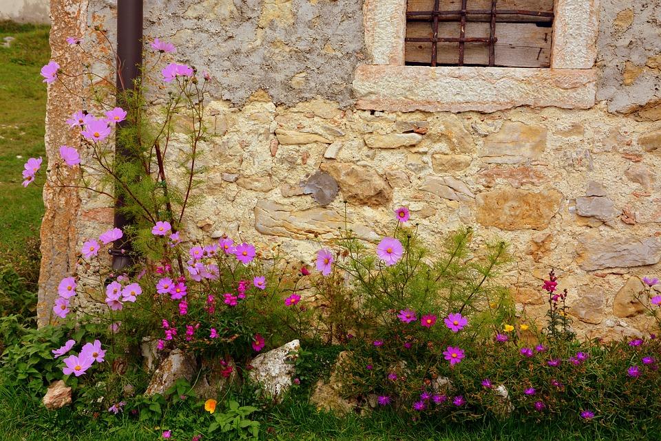 Ecke Haus Blumen Stein Wand Natur Steine Wände
