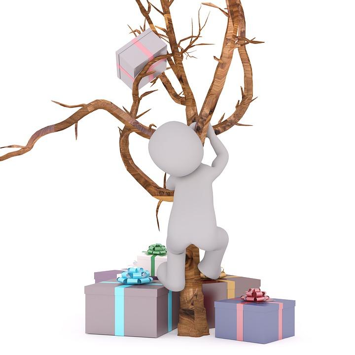 Geburtstag Geschenk Baum Kostenloses Bild Auf Pixabay