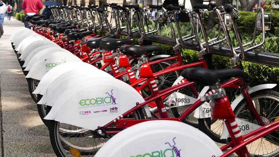 自転車, エコ, サイクル, マウンテンバイク, トランスポート, 市, 都市, 生態学