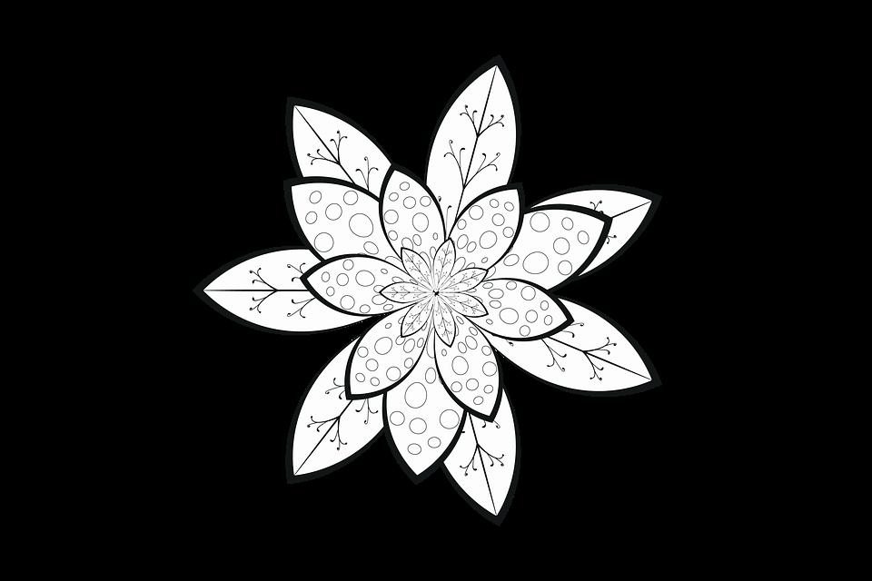 Pola Bunga Gaya Gambar Gratis Di Pixabay