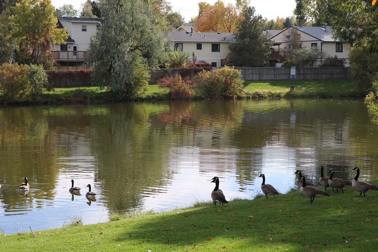 Allen Park Greeley Colorado Weld - Free photo on Pixabay
