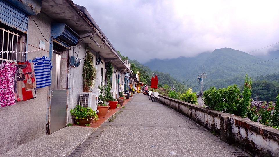 Taiwan, Kucing Kampung, Gunung, Rusa Kecil