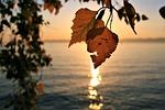 sunrise, para, autumn