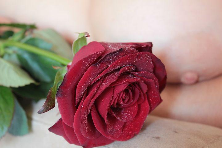 Голая роза фото есть,спс