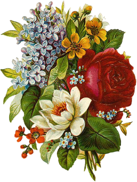 Flower Vintage Collage · Free image on Pixabay