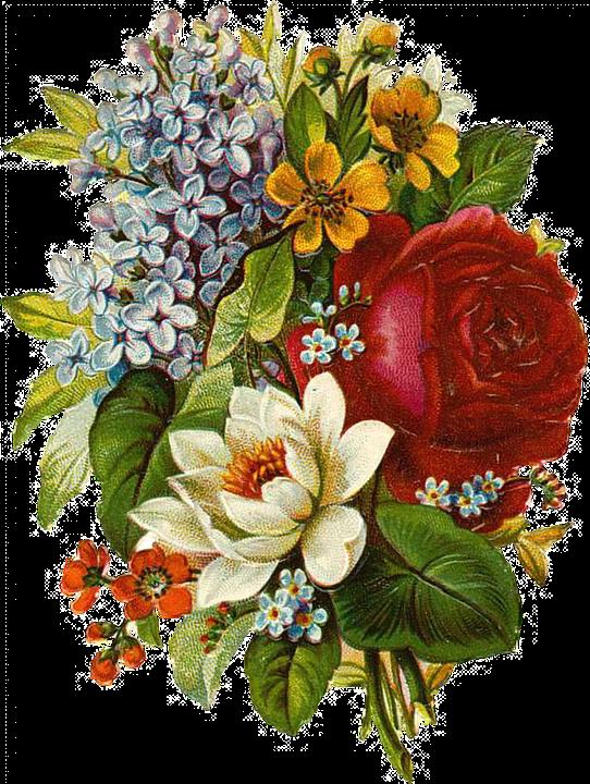 Flower Vintage Collage · Free image on Pixabay