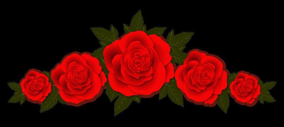 Roses, Flowers, Vignette, Design, Plate, Frame